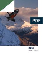 2017 impact report  web