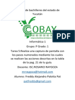 Colegio de Bachilleres Del Estado de Yucatán Tarea 5