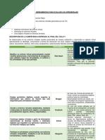 Matriz de evaluación de los aprendizajes de las TIC