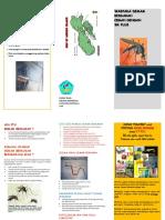 DBD leaflet baru.docx