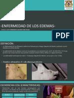 ENFERMEDADES-BACTERIANAS-ROMOOO.pptx