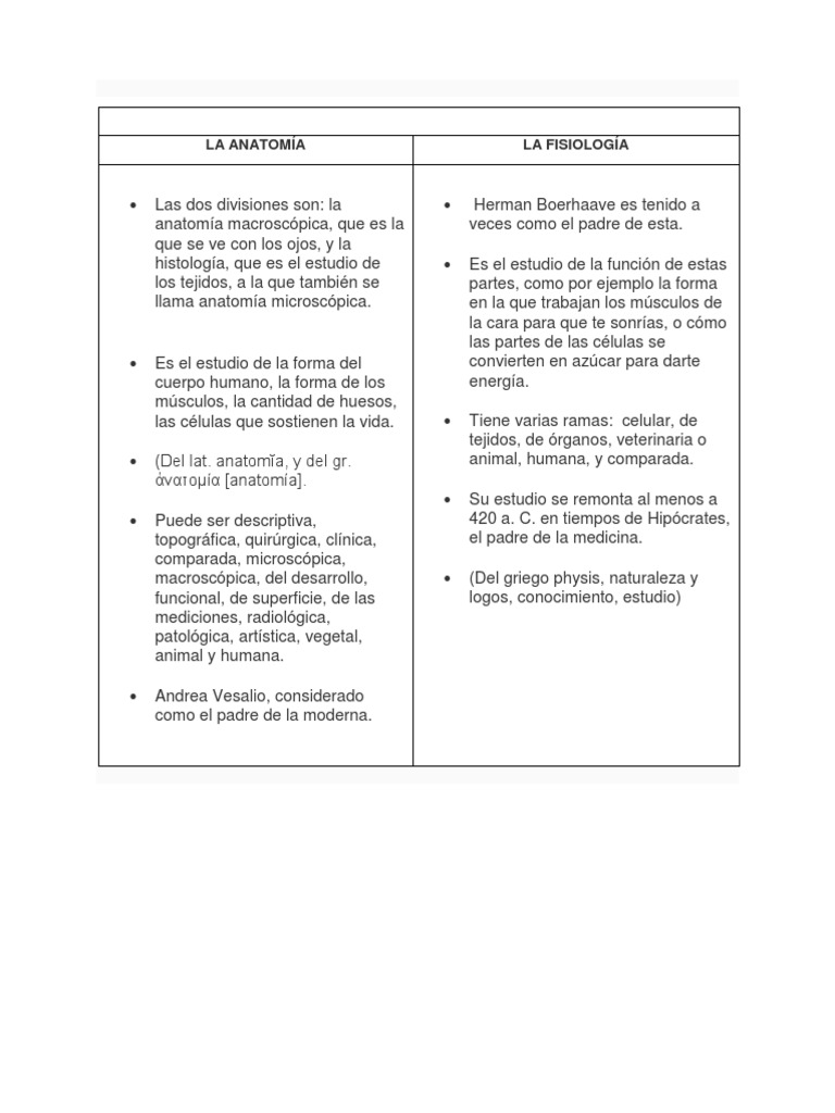 LA ANATOMÍA...test 1.docx