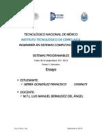 15500675_ensayo_tema1.pdf