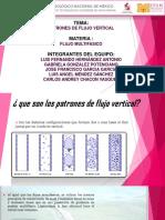 Patrones de Flujo Vertical-1