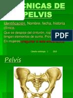 pelvisalumnos-170222001653