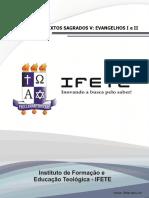 32 - Evangelhos I e II.pdf