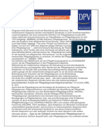 Pflegediagnosen.pdf