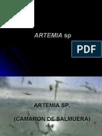 Crustaceos(Artemia Sp, Penaeus Vannamei, us Sp, Macro Bra Chi Um Rosenbergii Homarus Sp)