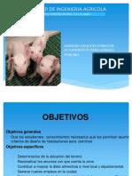 Clase Sobre Alojam de Porcinos