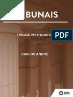 português - regência