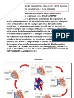 Fisio 2u 2 Clase Cardio 2
