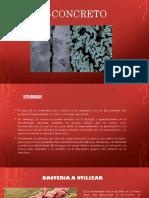 bio-concreto.pptx