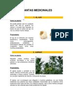 10 Plantas Medicinales Con Imagen 2018