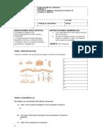 evaluacion BACTERIAS 7 BASICO.docx