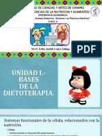 1.- Bases de La Dietoterapia.