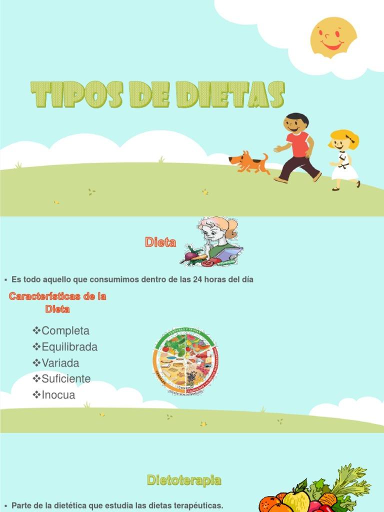 Tipos de dietas y caracteristicas