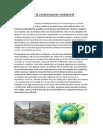 Importancia de La Contaminación Ambiental