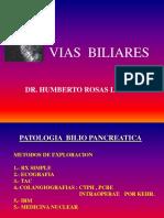 Vias Biliares Dr Rosas 2014
