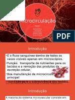 Microcirculação.pptx