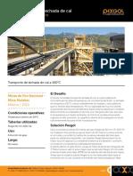cs_28_transporte-de-lechada-de-cal-a-100c_spa_v4.pdf