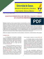 1. ALGUNAS FISIOPATIAS DE FRUTOS, TALLOS Y HOJAS EN CULTIVOS PROTEGIDOS.pdf
