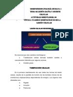 Tema I. Actividad Orientadora 2