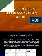 2. Anemia Gizi Dan Defisiensi Zat Gizi Mikro