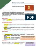 Fisiología fetal y neonatal