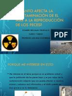 Cuanto Afecta La Contaminacion a La Reproduccion de Los Peces