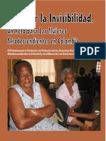 DerrotarlaInvisibilidad mujeres PCN.pdf