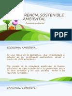 Economía Ambiental II-2018