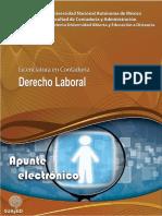 LC_1352_03026_Apunte_Derecho_Laboral.pdf