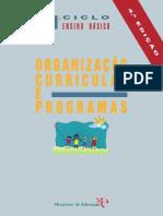 Doc de Apoio 4_Organização Curricular e Programas.pdf