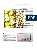 Liste Exercices Photosynthèse Début Pétrole