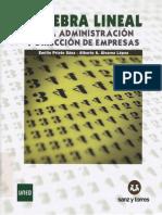 Algebra Lineal Para ADE_-_Prieto Sáez E. 457pags