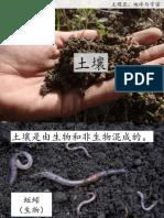 土壤.pdf