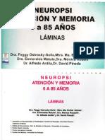 Neuropsi- Laminas.pdf