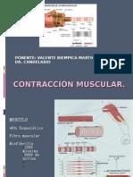 MEDICINA DEL TRABAJO Fisiologia Del Trabajo123