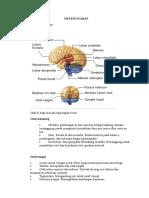Sistem_Saraf_dan_Neurotransmitter.doc