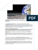 Contaminación del ambiente y efectos.docx