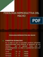Capitulo Ix Fisiol. Reprod. Del Macho