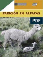 PARICION DE ALPACAS.pdf