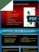 Sistema de Circulación RESUMEN