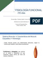 ANATOMIA Y FISIOLOGIA FUNCIONAL CLASE 2