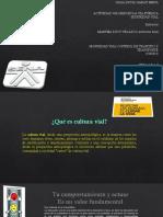 Precentacion via Publica