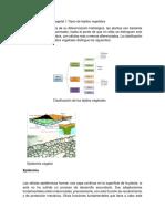 Anatomía y fisiología vegetal I.docx