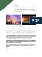 Efectos Que Causan Un Incendio