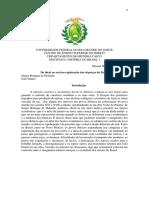 Paper - Brasil I