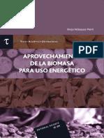 Aprovechamiento de La Biomasa Para Uso Energético_Borja Velazquez