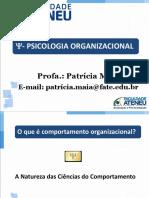 TEXTO 06 - O que é comportamento organizacional.ppt